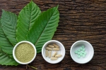 kratom, disorders care, this pain treating herbal supplement is not safe for use, Healthy living