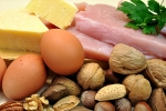 Why Protein is an important part of your healthy diet?